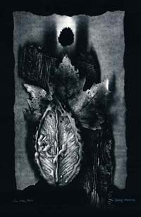 Charlie Arnold Untitled work