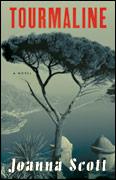 Cover of Joanna Scott's <em>Tourmaline</em>