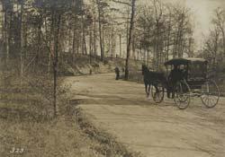 Carriage in Seneca Park