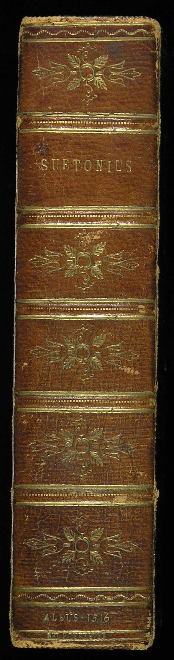 Suetonius spine
