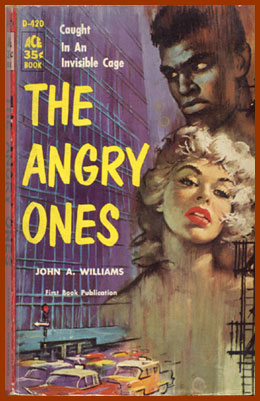 scanned bookjacket for the angry ones