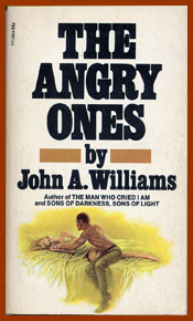 scanned book jacket for the angry ones