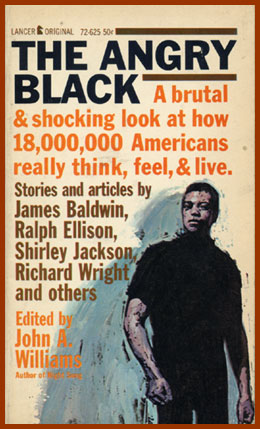 scanned bookjacket for the angry black
